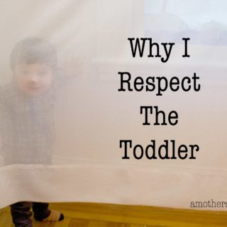 Why I Respect the Toddler